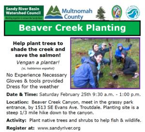 Beaver Creek Planting 2-25